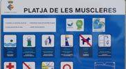 Bord-van-strand-Muscleres